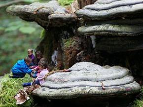 children_under_mushroom_300x225px_72dpi