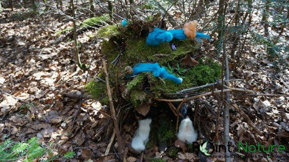 2015-04-09_animal_trace_DSC01721
