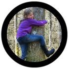 button_arbres