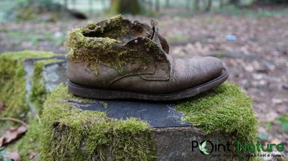 chaussure_mousse_dsc01835_1053c397591.jpg