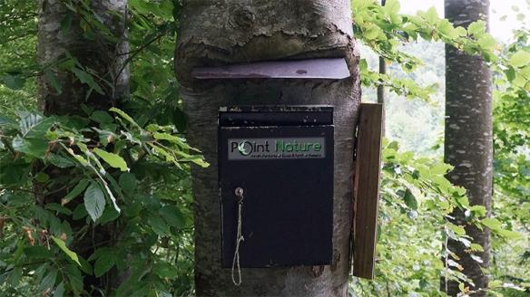 mailboxe800x450px