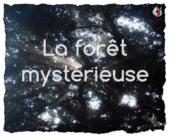 2015_atelier_affiche_foret_mysterieuse_800px